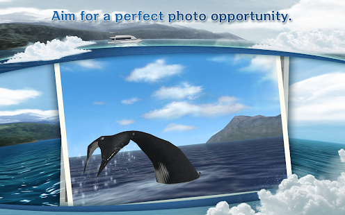 REAL WHALES Find the cetacean. - screenshot thumbnail