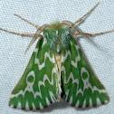 Sargasso Emerald