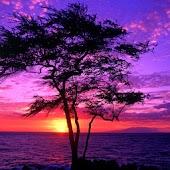 3D sunset 15