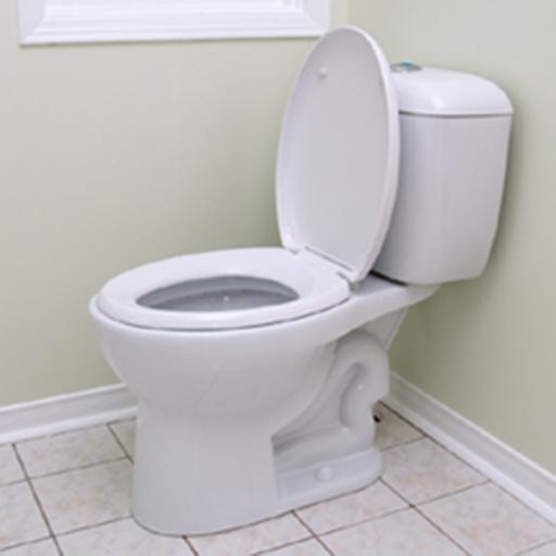 Toilet Simulator Classic