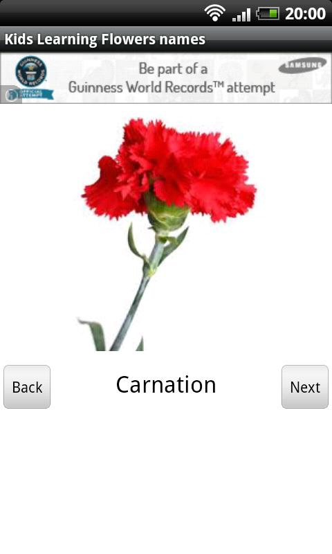 Www Flowers Name In English Flowers Ideas