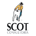 Scot Consultoria logo