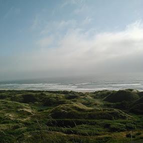 Ocean Storm by Shawna Morley - Landscapes Beaches ( windy, ocean, beach )