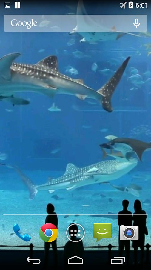 Mega Aquarium Video Wallpaper