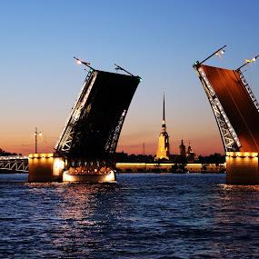 by Kseniya Maksimenko - Buildings & Architecture Bridges & Suspended Structures ( saintpetersburg, night, bridges, city )