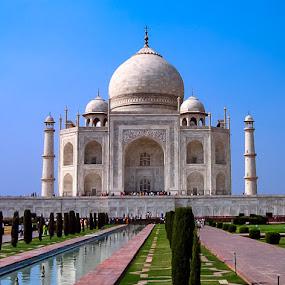 Taj Mahal by Lori Louderback - Buildings & Architecture Public & Historical ( taj mahal )