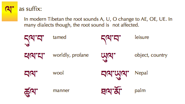 Tibetan Up-to-Date- screenshot