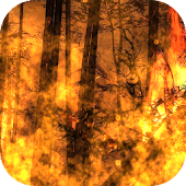 Flames HD Live Wallpaper Free