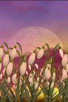 Screenshot of Snowdrops Free