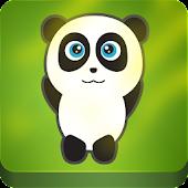Panda roll fun kids game