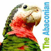 The Abaconian