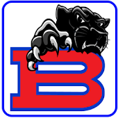 Bartlett Youth Sports Panthers