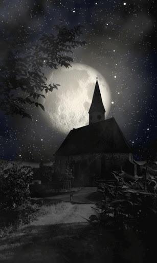 神秘之夜動態壁紙