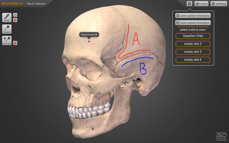 3d anatomy app