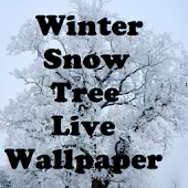 Winter Snow Tree Livewallpaper