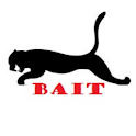 Cougar Bait Water Waves logo