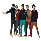 One Direction Love Quiz