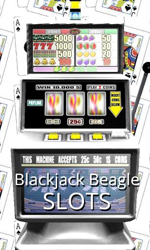 3D Blackjack Beagle Slots