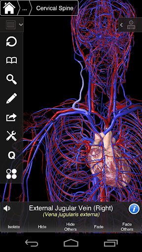 Essential Anatomy 3 for Orgs. 1.1.3 screenshots 7
