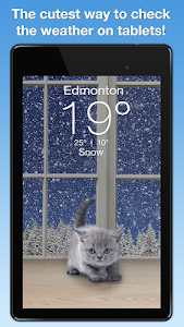 Weather Kitty screenshot 7