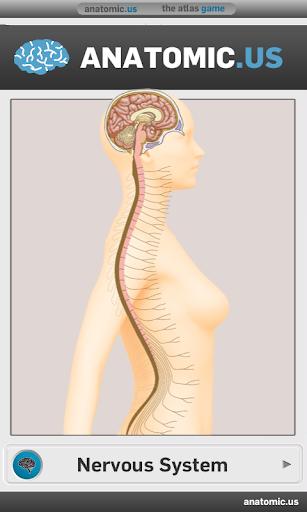 神經解剖學遊戲的