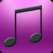 MP3 Junkie Pro