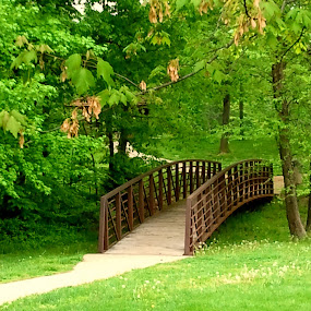 Magical Bridge by Ty Shults - Instagram & Mobile Android ( lawn, grass, trees, bridge, flowers )