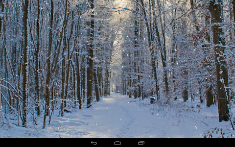 Winter Wallpaper screenshot 6