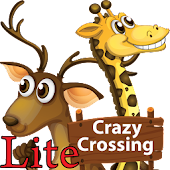 Crazy Crossing Lite