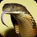 Snake – PuzzleBox logo