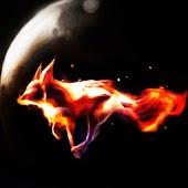 3D fire fox
