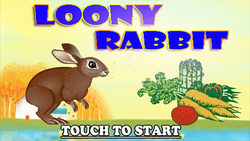 Loony Rabbit