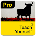 Spanish: Teach Yourself Pro
