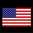 U.S. Citizenship Test icon