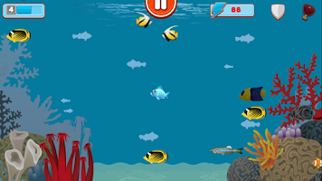 Screenshot of Grumpy Fish