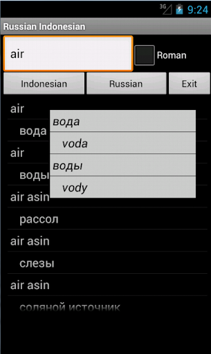 Russian Indonesian Dictionary