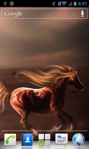 Horse in s Desert a live