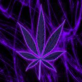 Purple Pot Leaf Keyboard Free