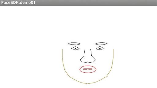 Face Shape Tracking
