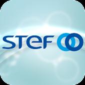 STEF -  Publication