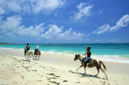 Horseback-Riding-on-Martinique - Horseback riding and sightseeing go hand in hand at Anse Grosse Roche, a little sandy beach in the town of Marin in southeast Martinique on the Atlantic coast.