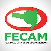 FECAM – Relatório de Atividade
