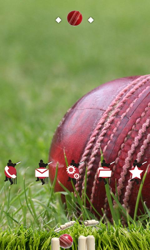 Cricket Ball- screenshot