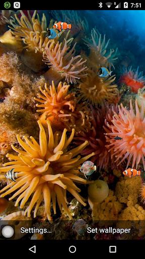 Aquarium LWP Download - Aquarium LWP 26 (Android) Free Download - Mobogenie.com