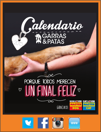 CalendarioG P2015