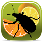 Citrus Pests Key icon