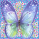 purple butterfly LWP