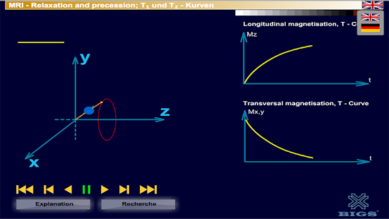 MRI Relaxation + precession- screenshot thumbnail