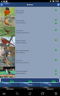 Bird Song Id: USA Automatic- screenshot thumbnail