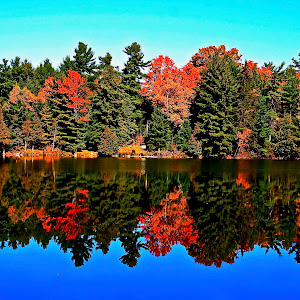 Fall Beauty.JPG